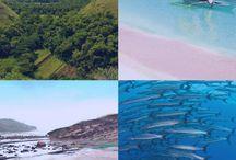 Reise Tipps | Asien / Asien ist groß, Asien ist vielfältig. Da müssen Reisetipps her, die einem Orientierung verschaffen.