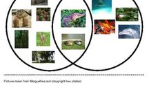 Transformation - Habitats