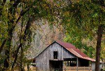 barns / by Pat Williams