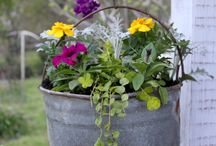 Garden Containers / Recycle, reuse everything possible in the garden.