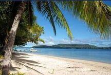 Tongan Holiday