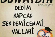 guaydin