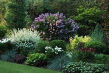 rzeczy do zrobienia w ogrodzie