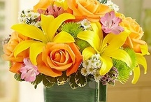 Melb cup / Yellow is the colour for the cup, this is a collection of arrangements using yellow flowers