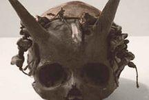 Devils Horns / by Joan Mclain