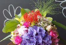 Blooms Design