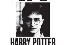 Harry Po-Potter