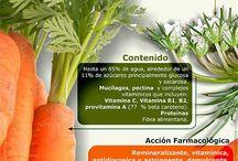 Hierbas, verduras y frutas