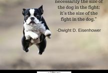 Dog Quotes / Quotes about the lovely nature of the canine friend!