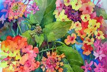 watercolors / by Dolores Winkler