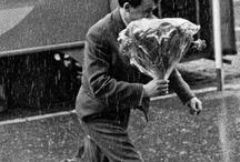 Цветы и дождь