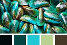 Colour combinations / Colour pallets and combinations that I love