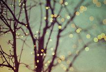 Light/ness.  Being.