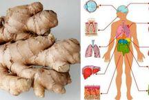 Ginger's health benefits