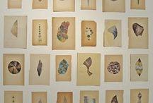 art / collage
