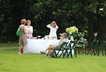 Ortensie in Fiore / Domenica 23 Giugno apertura straordinaria del Parco in occasione della fioritura delle ortensie