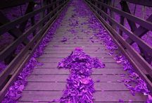 ♥Colour me purple♥