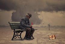 R U M I / by Fadi Aboush