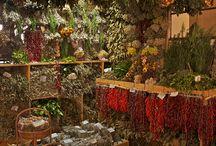 Secar plantas aromáticas
