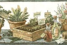Remedios Caseros / Plantas Medicinales, Vida Natural