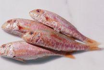 Seafood Preparation Tips