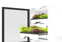 Urban Gardening: plantCube / Frische Salate, Kräuter und Microgreens direkt vor Ort mit dem plantCube von agrilution. Smart Gardening mit dem intelligenten Gewächsschrank für dein Zuhause.