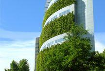 Diseño biofílico - Biophilic design / Un mundo más sostenible es posible