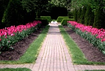 Unique Garden Designs