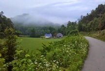 Beautiful Appalachia / Pretty scenes from the southern mountains! / by Appalroot Farm
