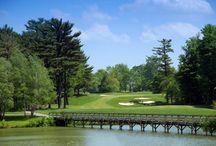 golf / Love of golf