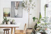 January/pynte opp med grønne planter