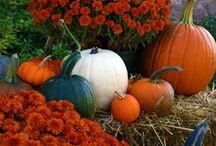 """Falling for Autumn / Fall Decorating Ideas, Fun Stuff to do in the Autumnal Months. Things that aren't necessarily """"Halloween or Thanksgiving"""" but can be done September to November / by Marchelle Chaney"""