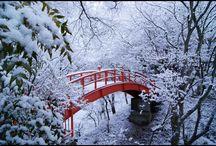 сходите в лес и сделать фото и захватите  тёплый чай с печеньем / о приятном провождением с подругой или другом