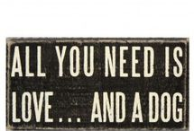 I Love My Dog / by Joette Forcier