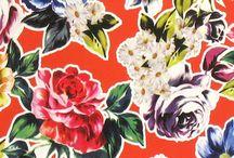 Fleurs & Feuilles
