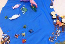 Kindergarten-Choice centers
