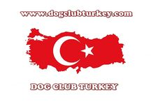 DOG CLUB TURKEY
