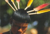 Indígenas brasileiros / Povos indígenas do Brasil