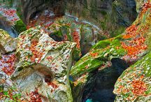 Beautiful World Slovenia