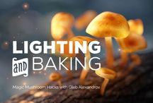 Lighting & Baking