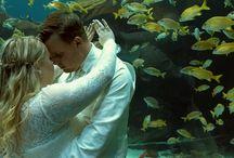 Wedding Videography / Cinematic wedding videography/cinematography.