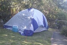 Learn the Camping / by Andrea Panico