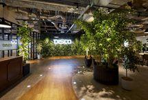 designers-office[green] / デザイナーズオフィスのgreen(植物/観葉植物)が用いられている実績を集めました。