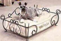caminha e casinha de cachorro