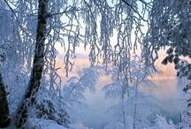 Winter Love / Joys of Winter #season