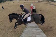 Complete Equine XC Training