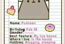 Pusheen log