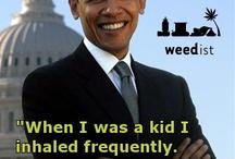 Marijuana Quotes / Memorable marijuana quotes from famous folks || www.weedist.com / by Weedist