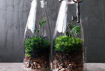 BottleTarium