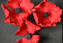 Anzac - Rememberence Day